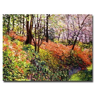 David Lloyd Glover Magic Flower Forest Canvas Art