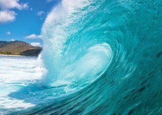 Phoenix Décor MD4A114 Hang Ten Ocean Surf Removable Full Wall Mural