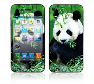 Panda Bear Apple iPhone 4 Skin