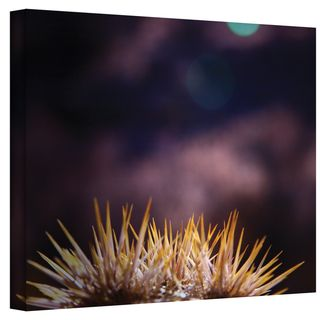 Mark Ross Obviousness Has its Advantages Wrapped Canvas Art