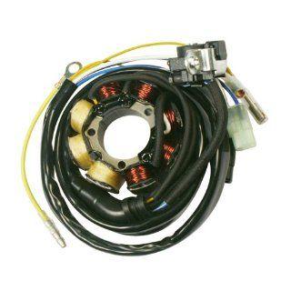 Accel 152577 Motorcycle Lighting Stator for Honda CRF250/450 :