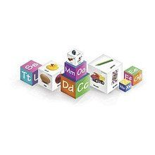 Talicor Brainy Baby Alpha Blocks: Toys & Games