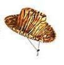 Animal Print Cowboy Hats (asstd leopard, tiger, zebra