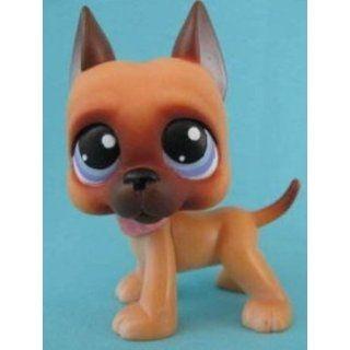 Great Dane Puppy Dog # 244 (caramel brown with blue eyes)   Littlest