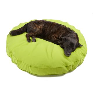 Sweet Dreams Lime Indoor/ Outdoor Round Corded Sunbrella Fabric Pet
