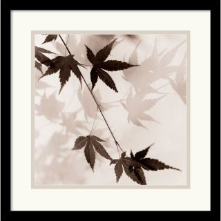 Alan Blaustein Japanese Maple Leaves No. 1 Framed Art Print Compare