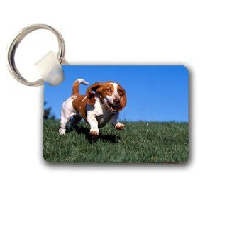 Basset hound Keychain Key Chain Great Unique Gift Idea