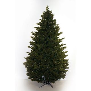 Good Tidings 650 Clear light Power Ridge Fir Christmas Tree