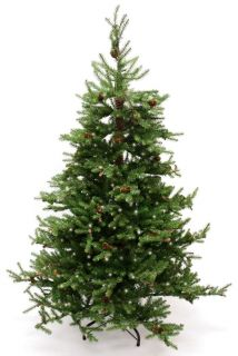 Good Tidings Prince Edward Fir Artificial Prelit 4.5 ft Christmas Tree