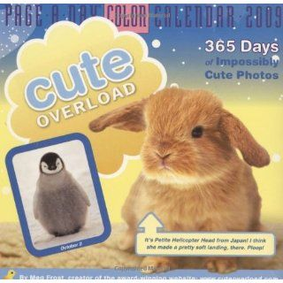 Cute Overload Page A Day Calendar (Color Page A Day(r) Calendars