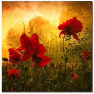 Philippe Sainte Laudy Red is for Love Canvas Art